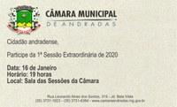 1ª Sessão Extraordinária de 2020